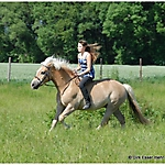 Pony_Mensch