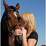 Pferd-Mensch