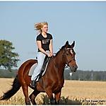 Pferd_Mensch_5