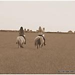 Pony_Mensch_SW_Sepia_2