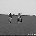 Pony_Mensch_SW_Sepia_3