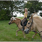 Pony_Mensch_13