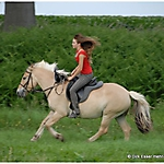 Pony-Mensch