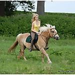 Pony_Mensch_15