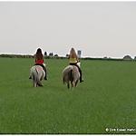 Pony_Mensch_18