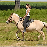 Pony_Mensch_2