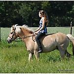 Pony_Mensch_3